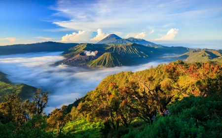 Bromo vocalno at sunrise, East Java, , Indonesia 免版税图像