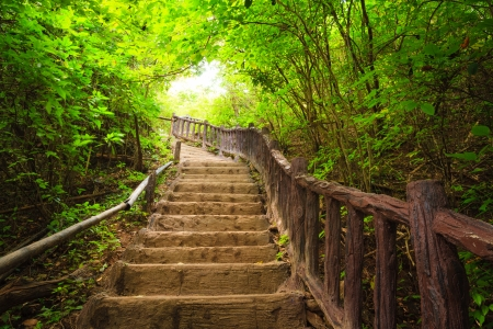 Stairway to forest, Erawan national park,Kanchanburi,Thailand 版權商用圖片