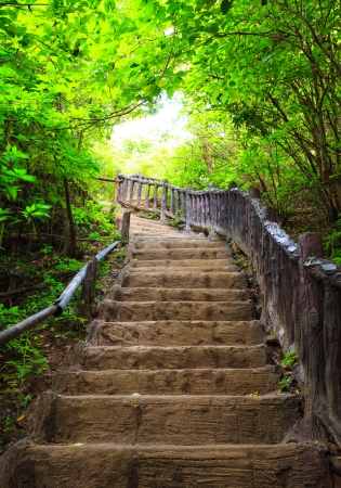 Stairway to forest, Erawan national park,Kanchanburi, Western of Thailand