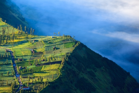 tengger: Village and Cliff at Bromo Volcano in Tengger Semeru national park, Java, Indonesia
