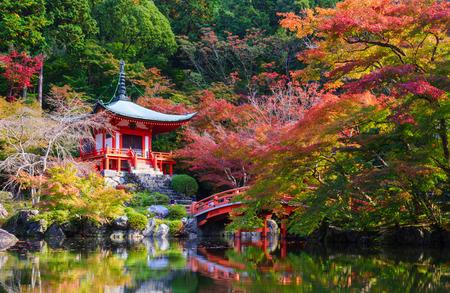 秋、京都醍醐寺