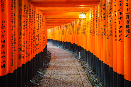 Torii gates in Fushimi Inari Shrine, Kyoto, Japan photo
