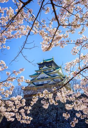 cerezos en flor: Castillo de Osaka en la temporada de flor de cerezo, Osaka, Japón Editorial