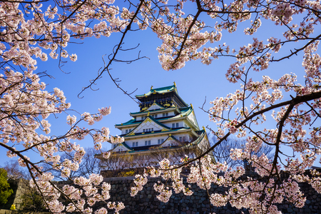 flor de cerezo: Castillo de Osaka en la temporada de flor de cerezo, Osaka, Japón Editorial