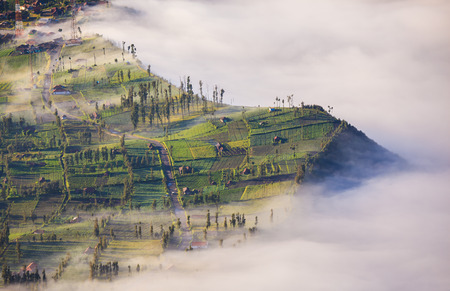 crater highlands: Village and Cliff at Bromo Volcano in Tengger Semeru national park, Java, Indonesia