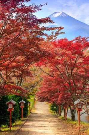 秋、富士吉田市の富士山へのパス 写真素材
