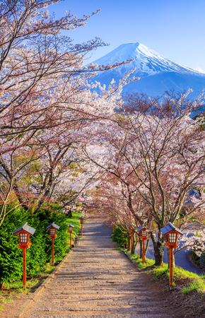 Path to Mt. Fuji in Spring seasaon, Fujiyoshida, Japan