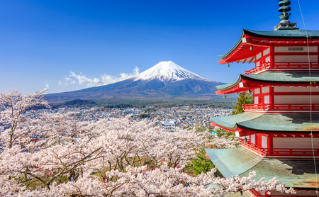 Mt. Fuji with Chureito Pagoda in Spring, Fujiyoshida, Japan Stok Fotoğraf - 58555690