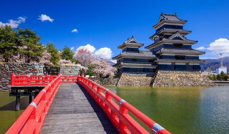 cisnes: Castillo de Matsumoto en la temporada de los cerezos en flor, Nagano, Japón Foto de archivo