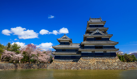 Matsumoto castle in cherry blossom season, Nagano, Japan