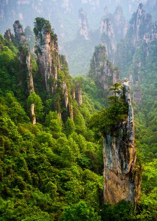 Zhangjiajie National forest park at sunset, Wulingyuan, Hunan, China