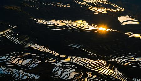 Yuanyang rice terrace at sunset, Yunnan, China