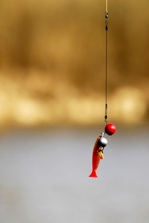fishing float: Pesca Float  Foto de archivo