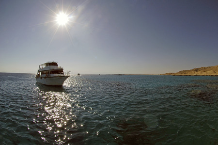 White ship on Red Sea in Egypt photo