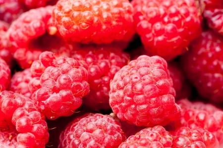 A beautiful selection of freshly picked ripe red raspberries Stock Photo