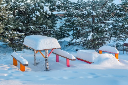 Beautiful winter landscape with snow covered trees and benches photo