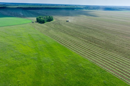 agriculture landscape: Aerial view of agricultural fields with working harvester