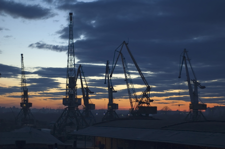 tonnage: River Cranes silhouettes at the evening sunset