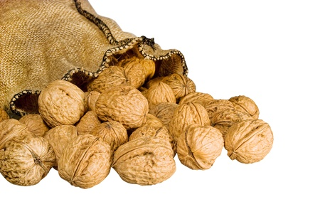 falling out: many walnuts falling out burlap sack isolated on white