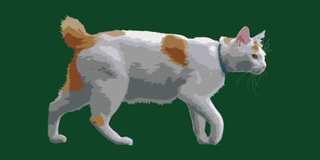 Walking Cat Ilustrace