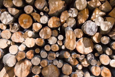 firewood background: Firewood background texture in sunlight close up Stock Photo