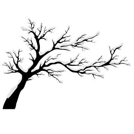 deciduous: Tree silhouettes Tree silhouettes  Illustration