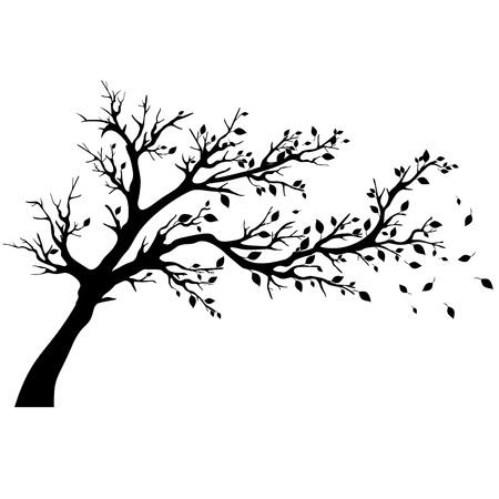 deciduous tree: Siluetas de �rboles Vectores
