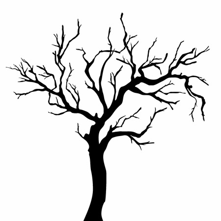 bareness: Tree silhouettes