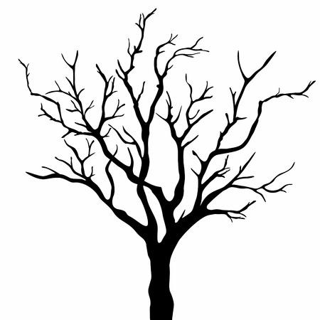bareness: tree silhouette
