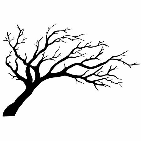 deciduous: tree silhouettetree silhouette