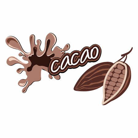 Cacao label design   Vector