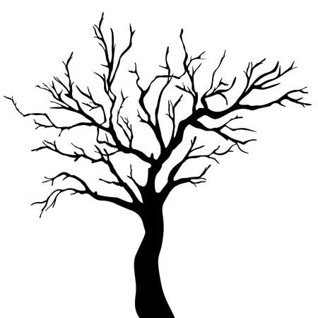 tree outline: straight vector tree with branches  Illustration