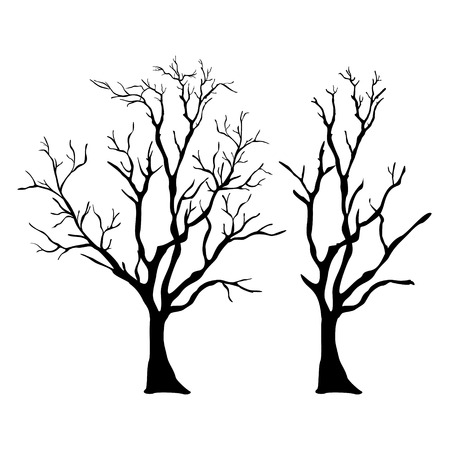 tree outline: vector tree with branches