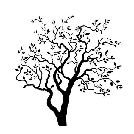 tree plan: Silhouette tree