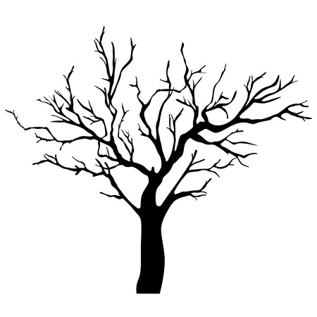 tree isolated: Tree Silhouette Isolated on White  Background . Illustration