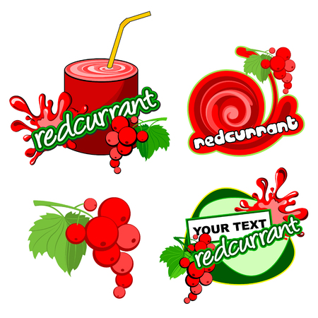 Redcurrant fruit and juice in glass. Vector illustration isolated on white background.