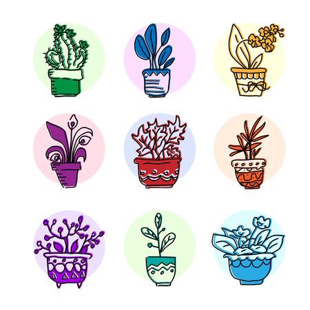 Bright vector icon set of housplants in pots
