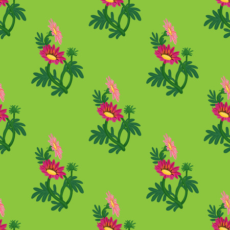 Gazania flowers seamless pattern vector illustration