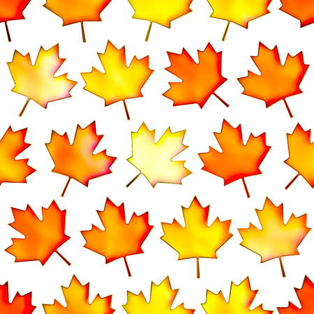 isolation: Seamless colorful maple-leaf texture, Isolation on a white background.