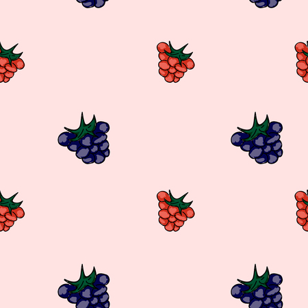 drupe: Set of sweet patterns. Seamless backgrounds with raspberries. Vector illustration.