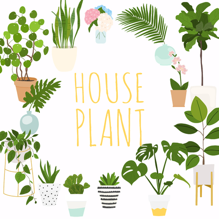 House plants. Flowerpot isolated objects, houseplant flower pot collection. Illustration