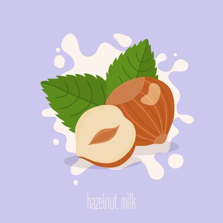 Hazelnootmelk. Hazelnoten op een melkplons. Vector illustratie.