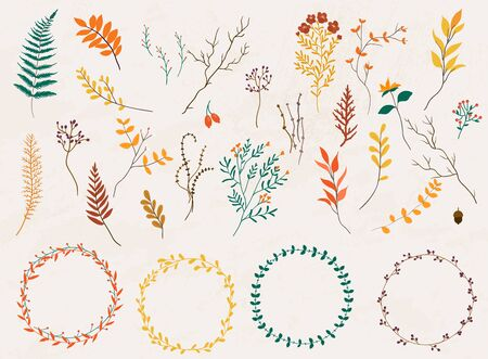 Floral elements. Hand drawn design elements. Collection of autumn flowers, leaves, dandelion, grass. Design for invitation, wedding or greeting cards. Banque d'images - 131260783