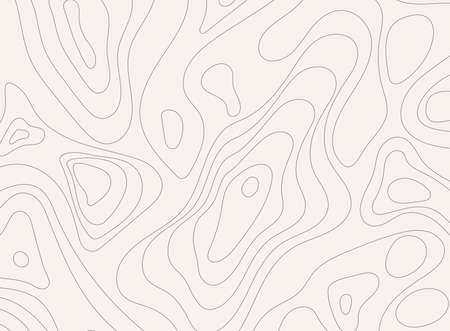 Topographic map background concept with space for your text. Topographic map contour background. Map mockup infographics.