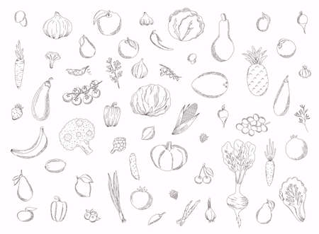 Collection of hand drawn fruits and vegetables. Vector illustration.