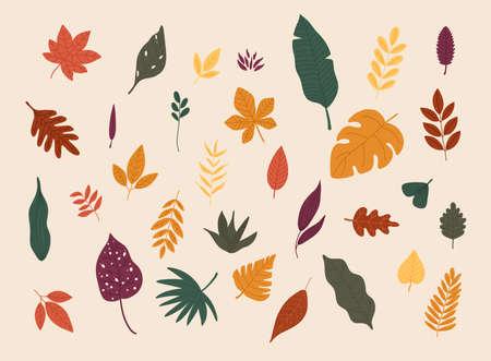 Set of colorful autumn leaves. Flat design modern vector illustration concept.