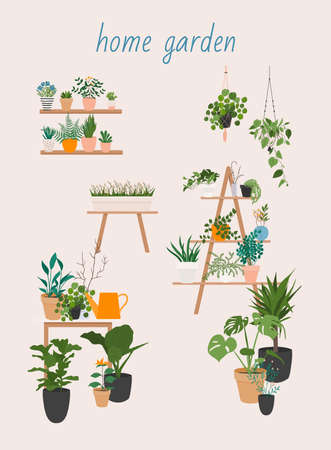 Garden, flowers and plants at home and outdoor. Potted Plants Set Vector. Indoor Home, Office Modern Style Houseplants. Stock Illustratie