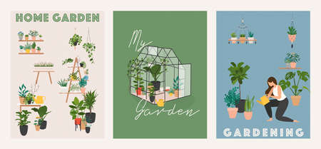 Garden, flowers and plants at home and outdoor. Glass greenhouse, home garden.