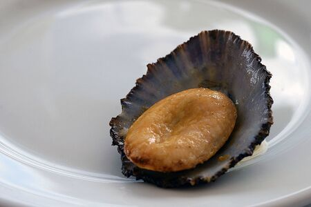Küche der Azoren. Schalentiere Lapas, Lipets sind auf den Azoren als Snacks beliebt. Gebratene Muschel in Knoblauchöl auf einer weißen Platte Nahaufnahme. Traditionelles Gericht der Azoren. San Miguel, Portugal.