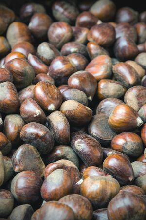Fruits of a sweet chestnut (castanea sativa) close-up.